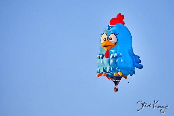 Lottie Dottie Chicken, Owner: Warley Macedo, Boituva, São Paula, Brazil, (c) Photo by Steve Kaye taken at the 2017 Albuquerque Balloon Fiesta, in blog post: Strange Birds Take Flight