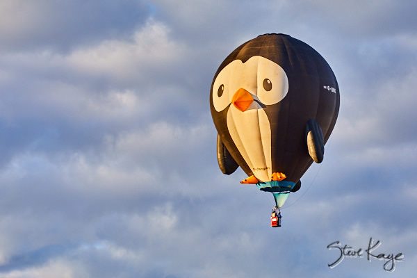 Puddles, Owner: Andrew Holly, Thatcham, Berkshire, United Kingdom, (c) Photo by Steve Kaye taken at the 2017 Albuquerque Balloon Fiesta, in blog post: Strange Birds Take Flight