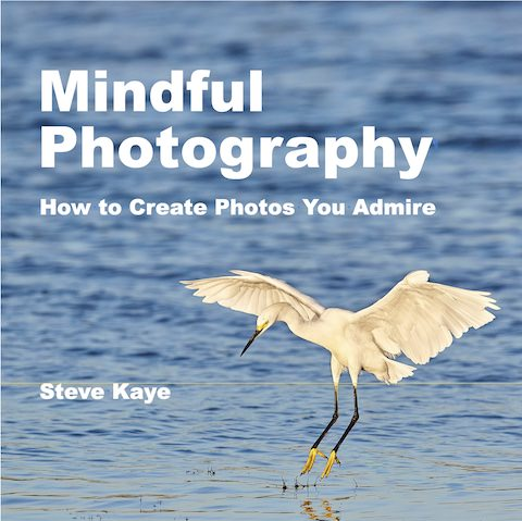 Mindful Photography, How to Create Photos You Admire, book by Steve Kaye